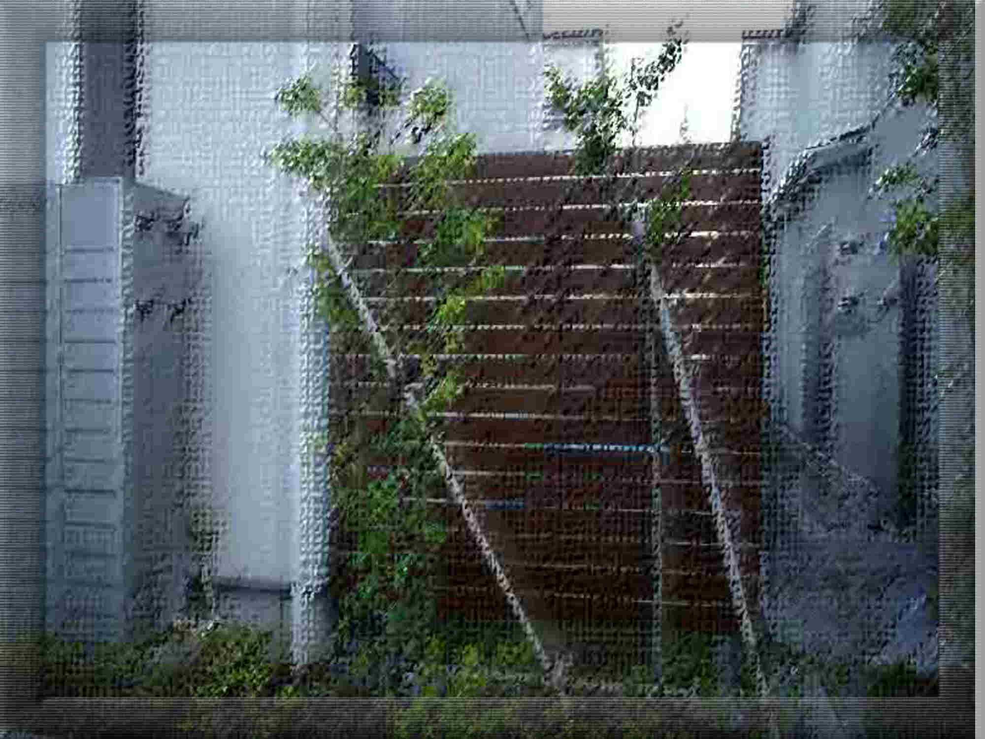 天然木(ハードウッド材)パーテーション